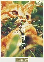 【動画】子猫物語