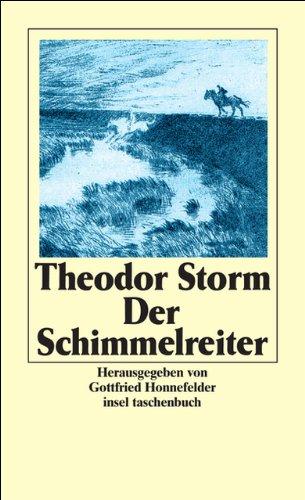Gesammelte Werke in sechs Bänden: Band 6: Der Schimmelreiter (insel taschenbuch)