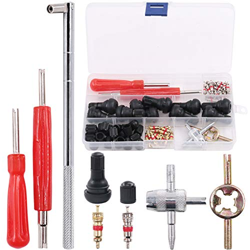 Rustark 65 pcs Tire Valve Stem Tool Puller and Installer Kit- 50 Pcs Valve Cores with Slotted-Head Valve Caps, Tire Stem Puller Tools,Dual Single Head Valve Core Remover and 4-Way Valve Tool
