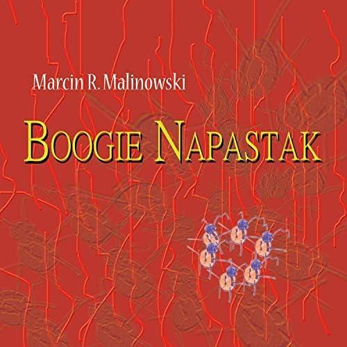 Marcin R. Malinowski