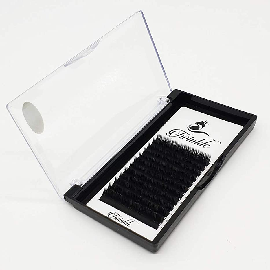 常習的本当に干し草Twinkle まつげエクステ マツエク Twinedge black Jカール 太さ 0.15mm [海外直送品] (9mm)