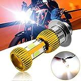 HONLEEX Mini AC/DC 9-85V P15D H6M LED Motorcycle Headlight Bulb,1600LM 3xCOB LEDs Hi/Lo Beam P15D-25-1 LED Bulb for ATVS Yamaha Motorbike Car Heamlamp.Pack of 1 (Golden)
