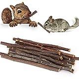 Apple Sticks Snack Per Animali Domestici,UMIWE Bastoncini Di Masticazione Naturale Piccolo Pet Giocattolo Da Masticare Per Porcellini D'India Chinchilla Squirrel Conigli Pappagallo Piccoli (40 Pezzi)