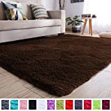 PAGISOFE Soft Comfy Rugs for Living Room Bedroom Area Indoor Modern Fluffy Rugs Decor...