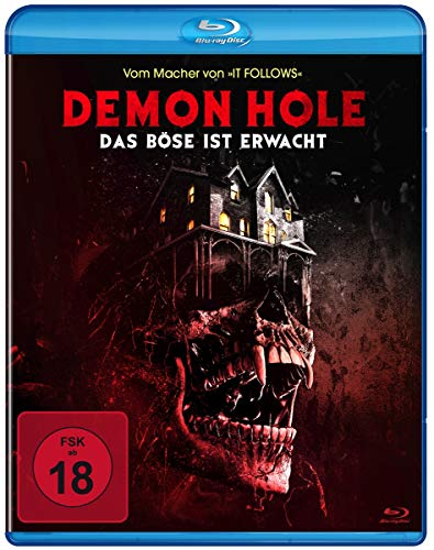 Demon Hole - Das Böse ist erwacht [Blu-ray]
