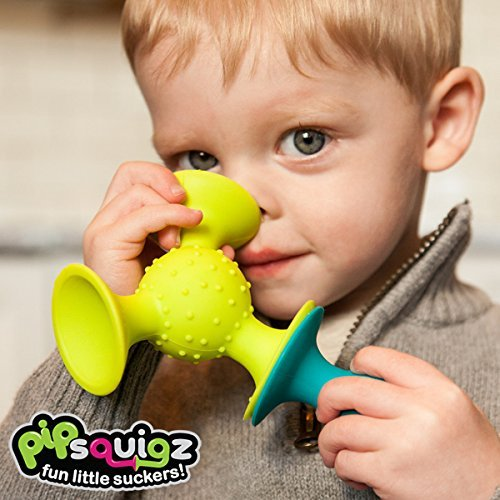 Fat Brain Toys Pip Squigz Toy Baby by