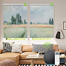 Yoolax Motorized Roller Shade with Pictures, Blackout Electric Window Blinds Works with Alexa Customized Size and Photo, Smart Window Shades with Remote Control for Home Office (Wheat Field)