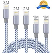 Lightning Kabel,WZS 5Pack 1M 1M 2M 2M 3M extra lange Nylon geflochtene iPhone Ladegerät Kabel Ladekabel USB Kabel für iPhone X/8/8 Plus/7/7 Plus/6S/6S Plus/5/5S/5C/SE,iPad Pro/Air/Mini,iPod (Silber)