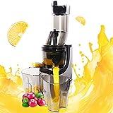 Slow Juicer Masticating Juice Extractor Professional Machine Quiet Motor Reverse Function Cold Press Juicer with Brush Easy to Clean High Nutrient Fruit Vegetable Orange Juice Maker Juicers