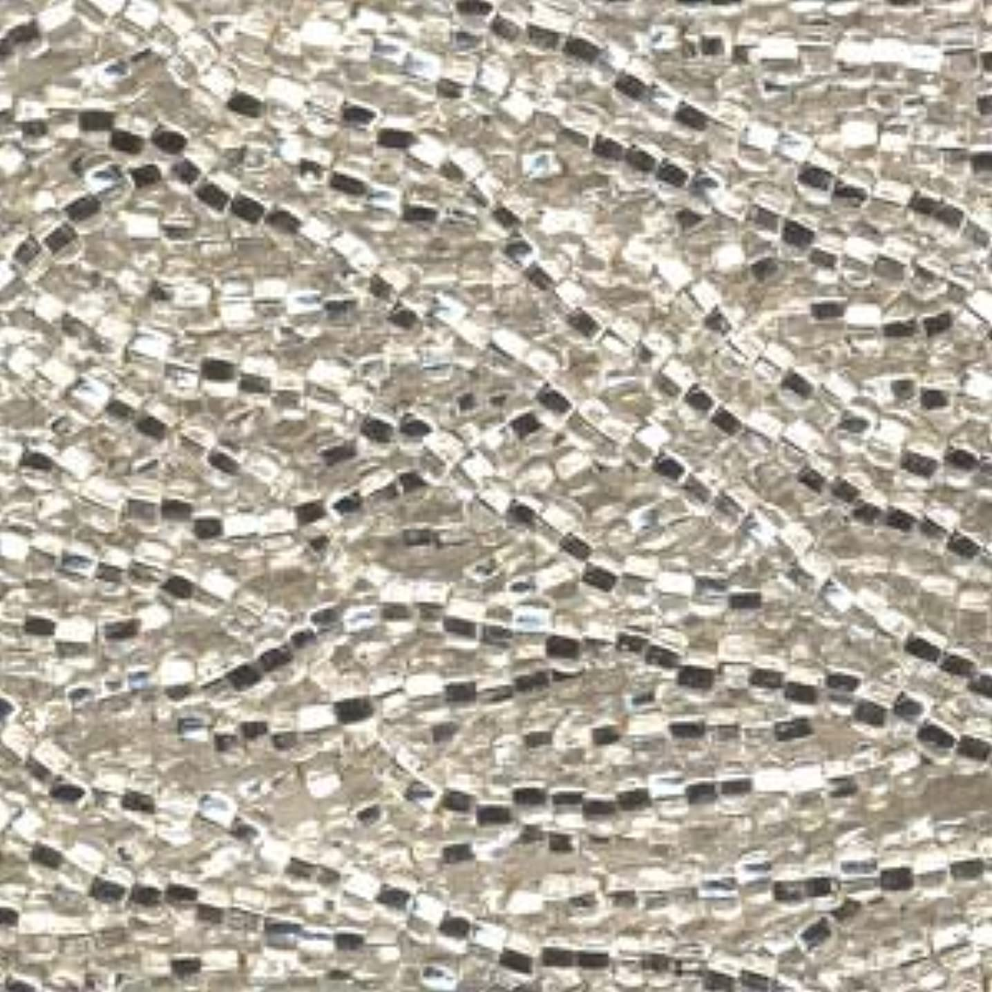 Czech Rocailles Seed Bead 8/0 (1/2 Hank Pack) SILVER LINED CRYSTAL
