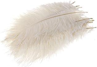 Pluizige struisveren, 10 stuks, 25,4 cm - 30,5 cm lang wit
