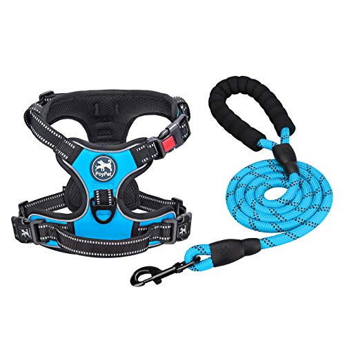 PoyPet Dog Harnessand Leash Combo,Escape Proof No Pull Vest Harness, Reflective Adjustable SoftPadded Pet Harness with Handle for Small to Large Dogs(Blue,L)