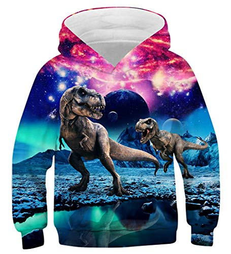 cnewid Boy's Digital Printing Hoodie Long Sleeve Fun Hooded Pullover Sweatshirts Gr. 11-13 Jahre, B5 Dinosaur