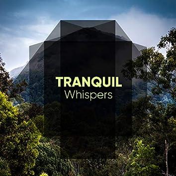 # 1 Album: Tranquil Whispers