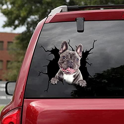 TEANQIkejitop Pegatina de coche, lindo francés vinilo parachoques pegatina calcomanía mascota familia mascota perro