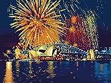 wcyljrb Pintura Digital De Bricolaje Vista De Fuegos Artificiales Pintura Al Óleo Digital Lienzo Pintura De Arte Familiar 16X20 Pulgadas (Sin Marco)