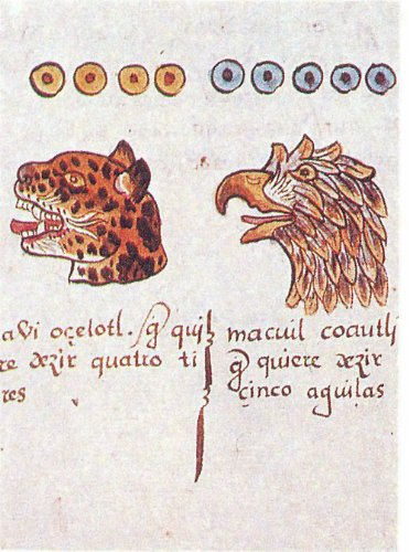 Codice Magliabechi: Libro De La Vida/ Book of Life (Codices Mexicanos)