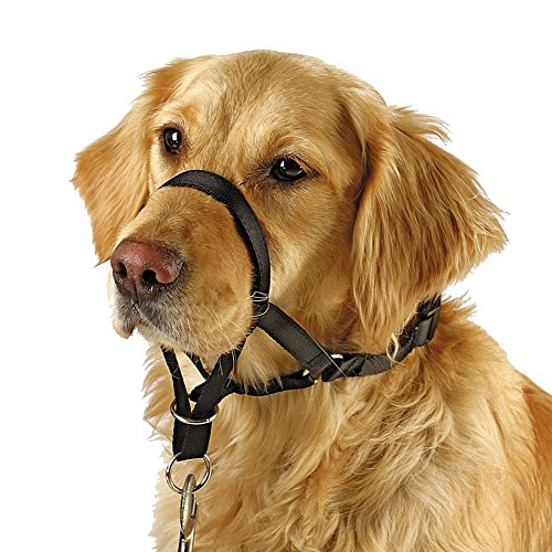 Barkless Dog Head Collar, No Pull Training Tool for Dogs on Walks, Includes Free Training Guide, 5 (L)