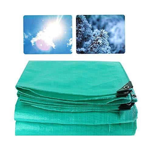 GGYMEI Lonas Impermeables Exterior Toldos De Protección Solar Antienvejecimiento Exterior Toldo Plástico Material De Polietileno (Color : Green, Size : 10x15m)