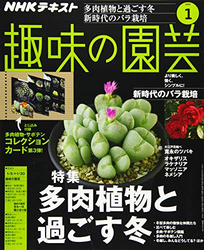 NHKテキスト趣味の園芸 2020年 01 月号 [雑誌]