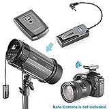 Zoom IMG-1 neewer strobo flash 600w da
