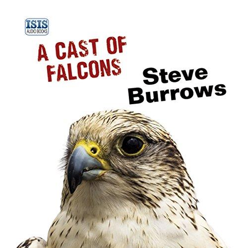 A Cast of Falcons audiobook cover art