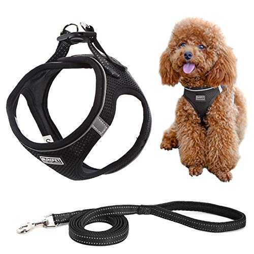MIEMIE Step-in Air Dog Harness and Leash No Pull, Reflective and Breathable Pet Harness, Adjustable Soft Padded Vest Harness for Puppy Small Medium Dogs & Cats Black L