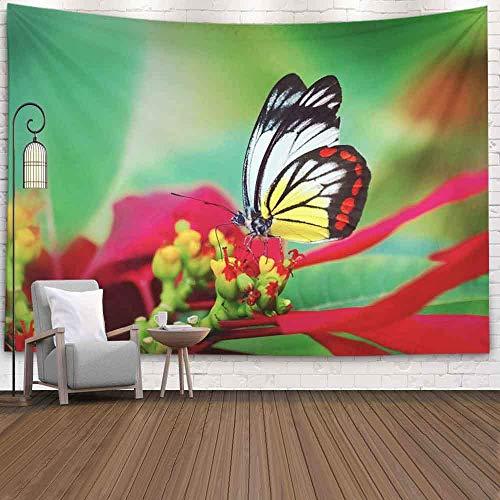 N / A Art Wall Tapestry, Wall Room Decor Collegw Dorm...