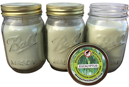 Natural Eucalyptus Mosquito Repellent Candle (Set of 3) no Deet - 88 Hour Burn - Naturally Repels Insects with Essential Oils, Indoor/Outdoor, Ball Mason Jar, Citronella Soy, Made in USA