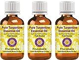 Deve Herbes Aceite esencial de trementina pura (Pinus palustris) Destilado a vapor de grado terapéutico natural Destilado triple 100ml Pack of...
