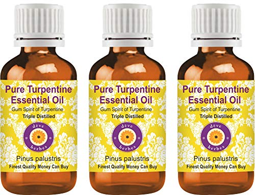 Deve Herbes Aceite esencial de trementina pura (Pinus palustris) Destilado a vapor de grado terapéutico natural Destilado triple 100ml Pack of Three (10.1 oz)-Espíritu de goma de trementina