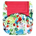 "HappyEndings Contoured""Day or Night"" All in One AIO Hook and Loop Cloth Diaper (+Pocket)"