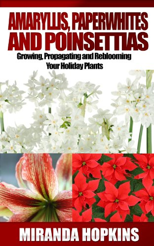 Amaryllis, Paperwhites and Poinsettias: Growing, Propagating and Reblooming Your Holiday Plants (English Edition)