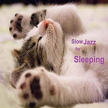 Slow Jazz for Sleeping