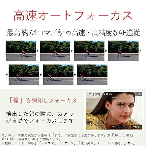 星空 指数 ヶ 原 戦場 戦場ヶ原の星空と撮影スポット 栃木県日光市