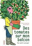 Des tomates sur mon balcon - Mon petit potager