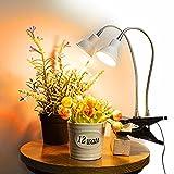 Dommia LED Plant...image