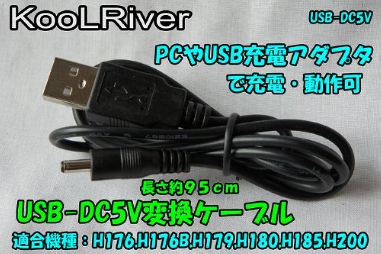 デザイナー目を覚ます現実的ドライブレコーダをUSB電源アダプタで動作させる変換ケーブルUSB-DC5V変換ケーブル