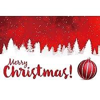 DORCEV クリスマス写真背景