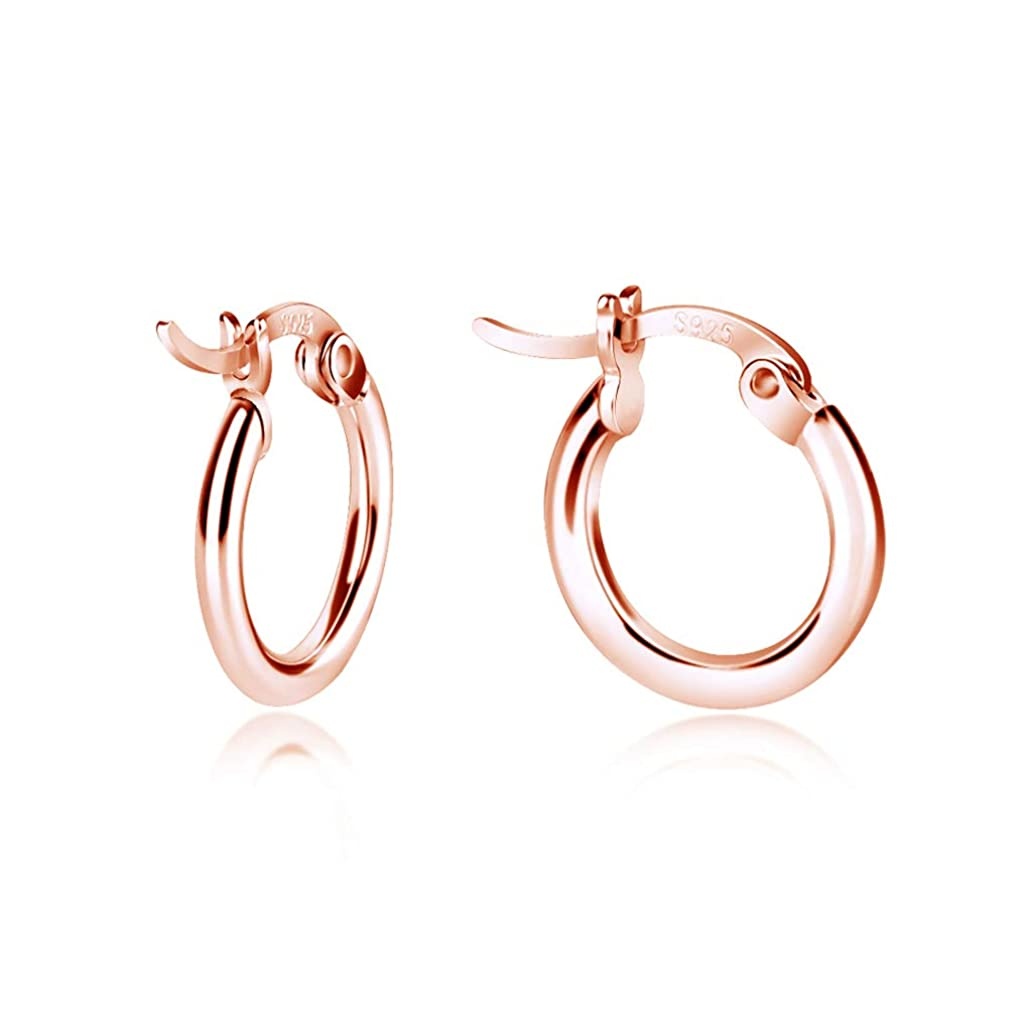 Rose Gold Earrings, Earrings for Women Fashion