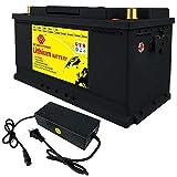 LiFePO4 Battery 100Ah 12V 1280Wh Deep Cycle Lithium Iron...