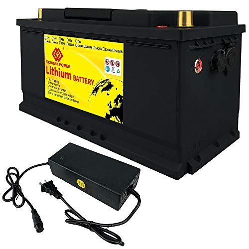 LiFePO4 Battery 100Ah 12V 1280Wh Deep Cycle Lithium Iron Phosphate Battery Built-in BMS Protect Charging and Discharging High Performance for Golf Cart EV RV Solar Energy Storage Battery
