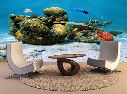 Papel tapiz de alta calidad de impresión de póster mural Corales del mar caribe pared decoración Arte Foto Papel tapiz