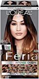 L'Oreal Paris Feria Brush-On Intense Ombre Effect Hair Color, 040 For...