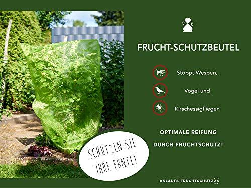 1 STK. Frucht-Schutzbeutel mit Zugband, Zum Schutz vor Wespenfrass, Vögel, Kirschessigfliege und andere Insekten. Traubenschutz, Organzabeutel (150x100 cm)