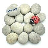 pamindo Steine zum Bemalen & Dekorieren, groß flach & handverlesen - Set mit 50-80 mm großen Kieselsteinen für Bunte Malerei & Dekoration [hellgrau/beige]