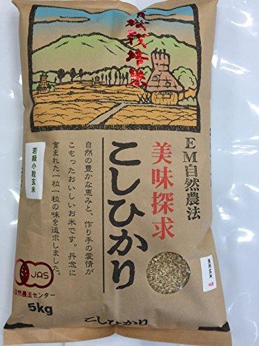 無農薬 有機栽培米 JAS認定 玄米 令和2年産 石川県産 有機若緑小粒玄米 食用玄米   (5kg)