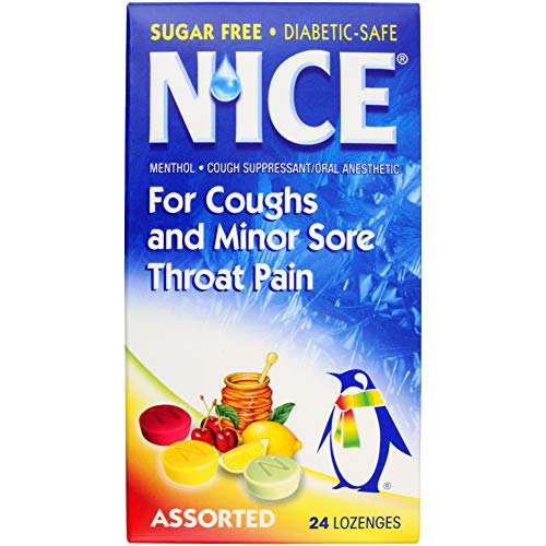 N'ice Sugar Free Assorted Flavor Lozenge 24 Ct (1 Pack Only)