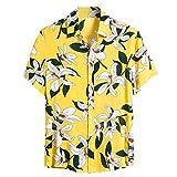Aoogo Hawaiihemd Herren 3D Gedruckt Kurzarm Button Down Lustig Sommer Strandhemd Freizeit Hemden für Männer