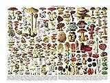 JYSHC 1000 Piezas Puzzle Mushroom Icon Adultos Niños Juguete Educativo Puzzle Kd24Hz